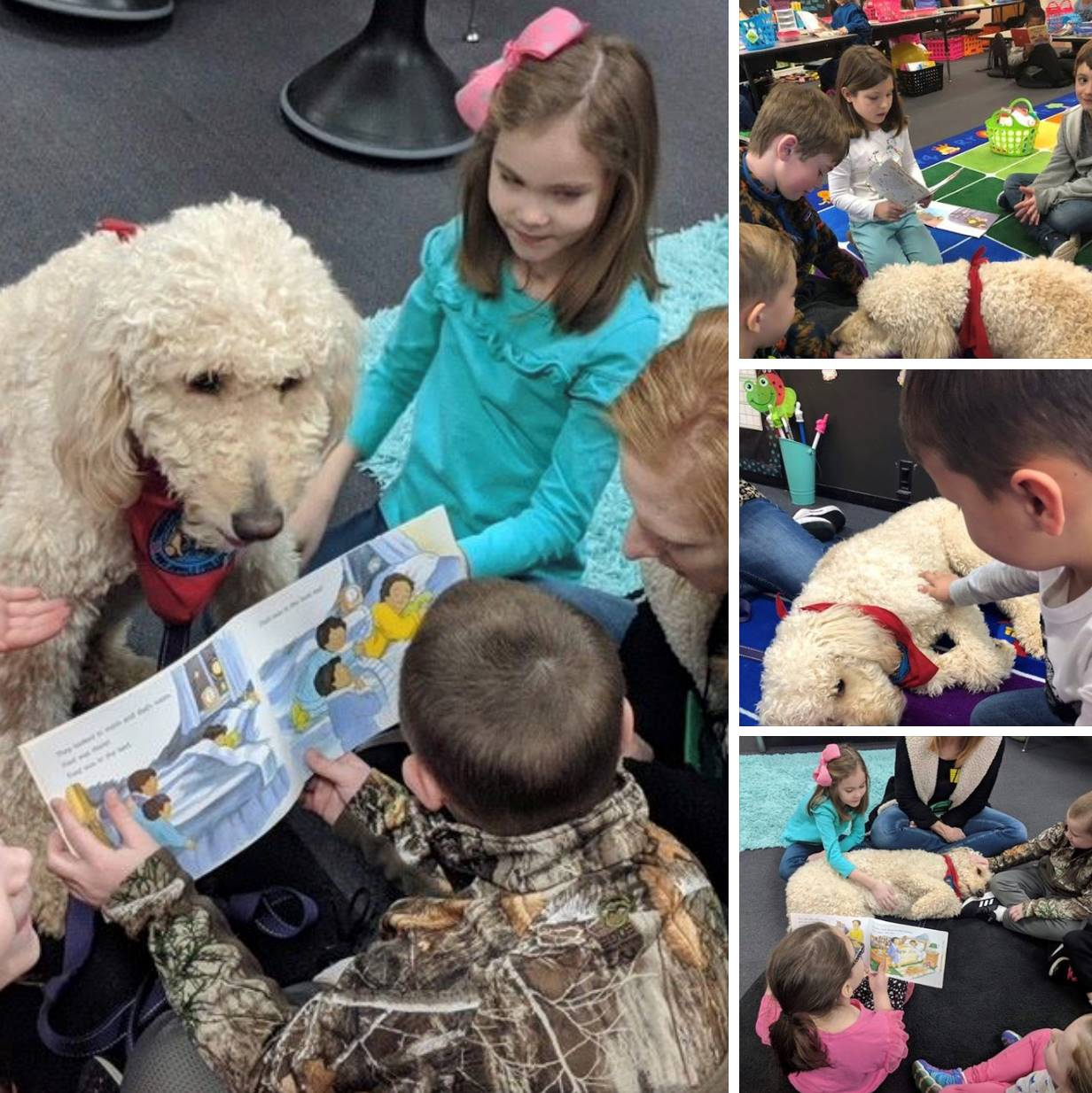 Reading to Therapy Dog